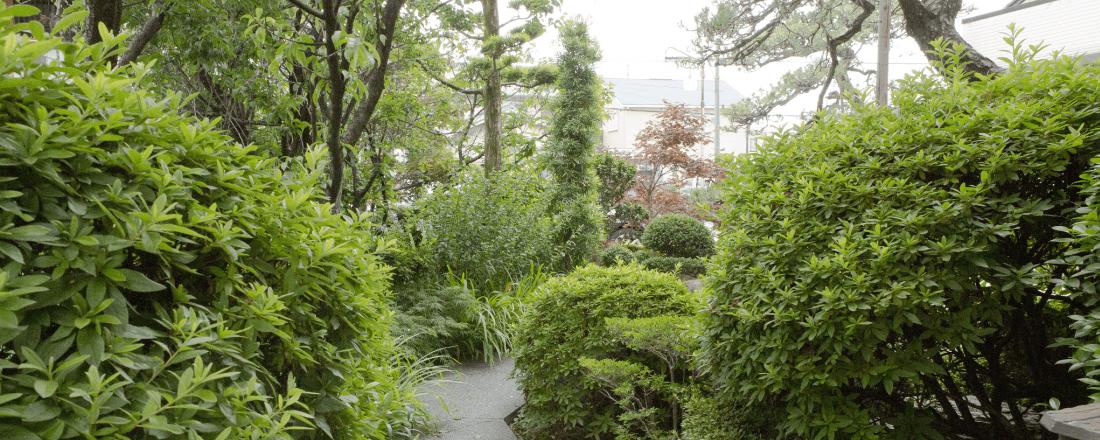 川原神社直結の道